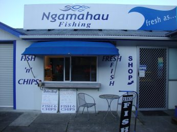Ngamahau Fishing